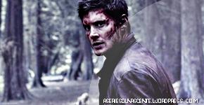 Supernatural: 5 coisas que precisa saber sobre a 8ª Temp.